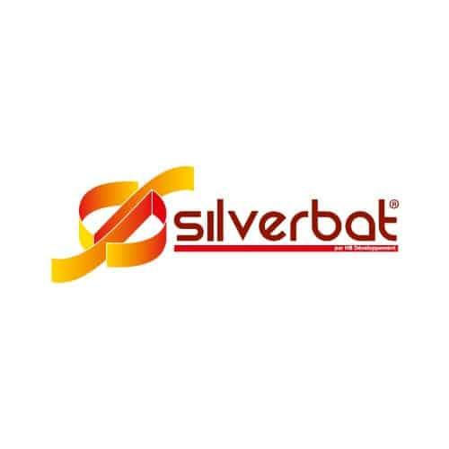 Silverbat